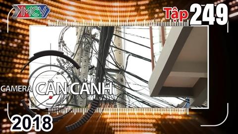 camera-can-canh-tap-249-full-mang-nhen-tren-dau-dan-trom-khong-thanh-o-nhiem-moi-truong-nuoc